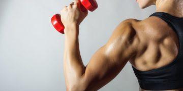 Keine Angst vor Trainingspausen – So profitieren wir vom Muscle Memory Effect